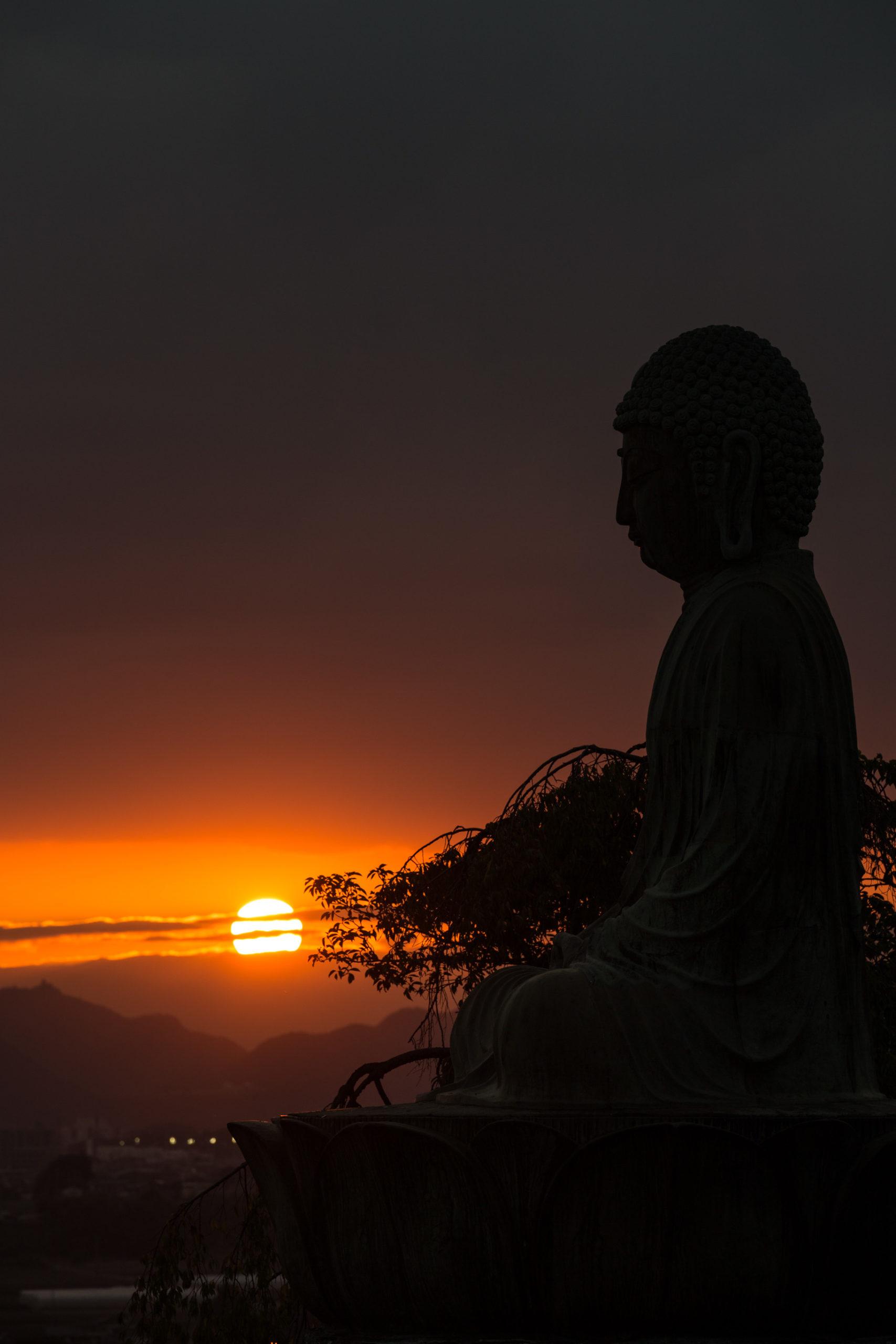 新生大仏(愛知県犬山市)| 風景撮影の画像
