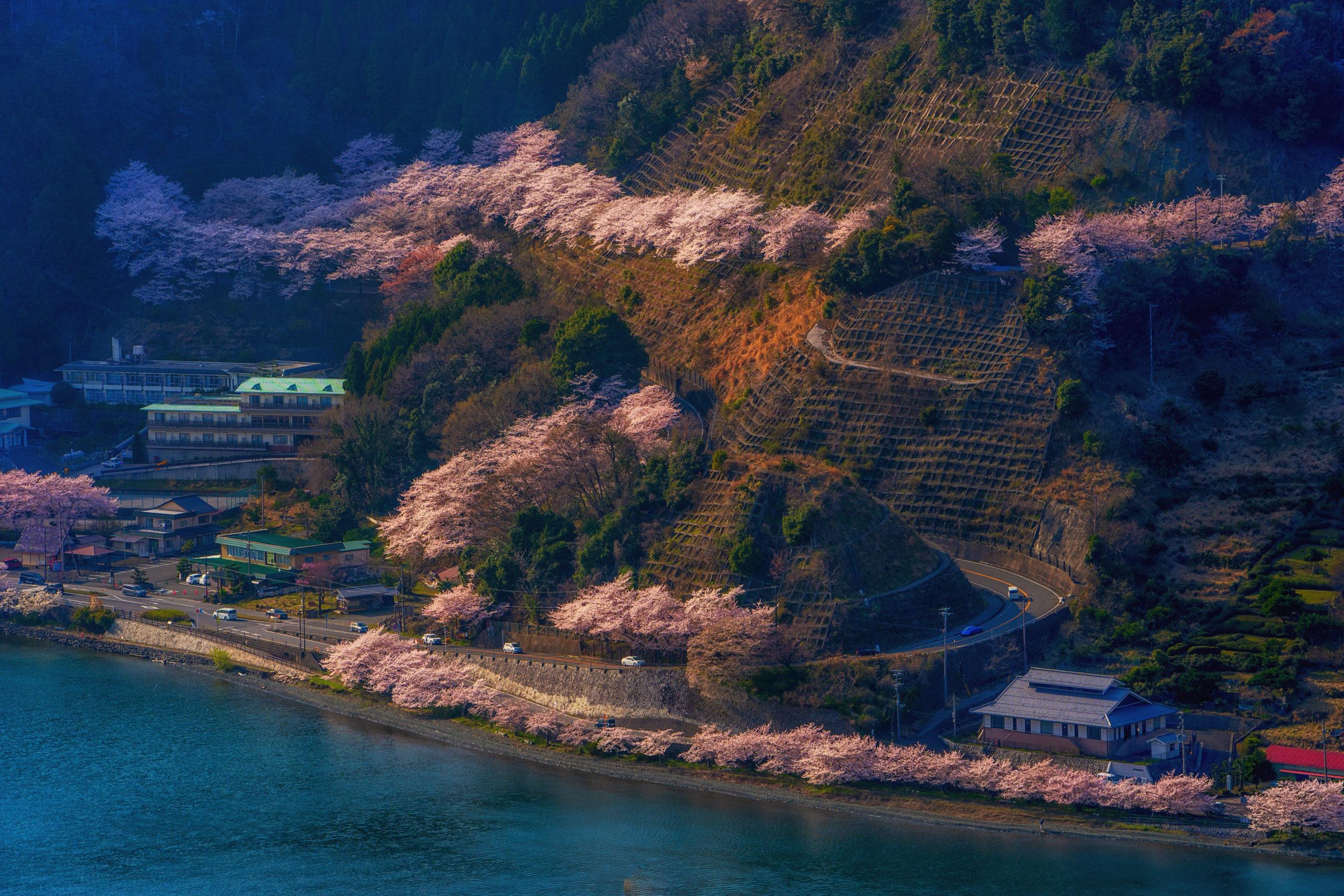 奥琵琶湖(滋賀県長浜市)  観光PR写真撮影の画像